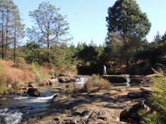Zwakala River Retreat - Trout Fishing