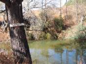 Zwakala River Retreat
