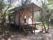 Tent 6