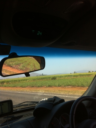 Note the temperature on a Winters day on the North Coast - and the sugar cane!