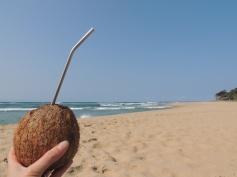 Healthy Coconut drink from Manguzi Market - loving the EcoJarz stainless steel straw