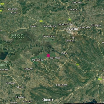 Home is the pink dot.