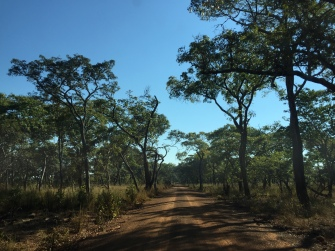 On the way to Kafue River Lodge