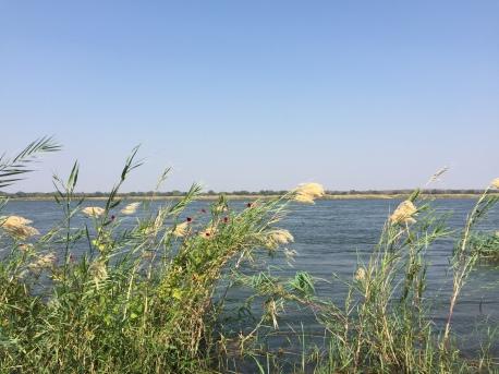 Zambezi River - it's a beast, but it's a beauty